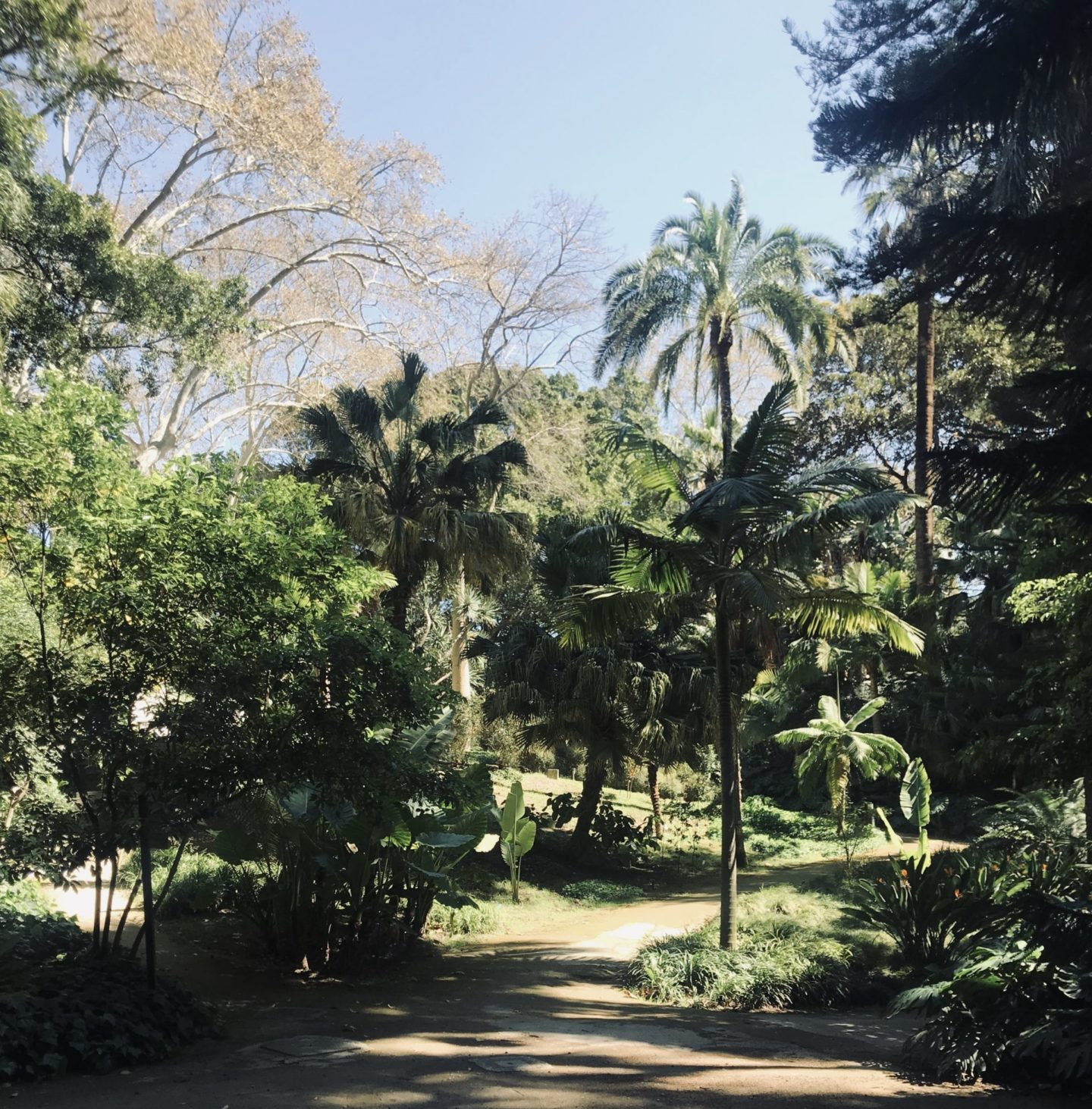botanische tuin Málaga